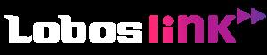 Lobos Link – Łączymy potrzeby z wydajnymi rozwiązaniami